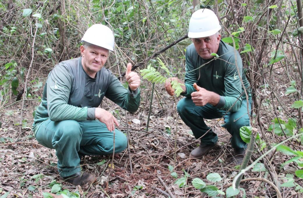 Lajes Patagonia realiza ações de preservação ambiental